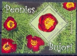 ROEMENIE   (CATBL039) - Plants