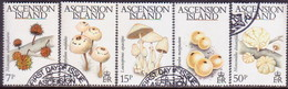 ASCENSION 1983 SG #332-36 Compl.set Used Fungi - Ascension