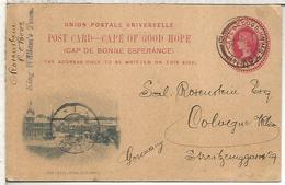 CAPE OF GOD HOPE ENTERO POSTAL 1903 THE JETTY PORT ELIZABETH - Kaap De Goede Hoop (1853-1904)