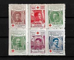 Francia Lote De 6 Viñetas En Bloque De La Asociacion Damas Francesas Cruz Roja - Commemorative Labels
