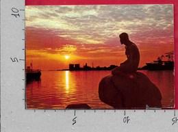 CARTOLINA VG DANIMARCA - COPENHAGEN - Langelinie - The Little Mermaid - 10 X 15 - ANN. 1970 - Danimarca