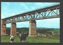Moresnet / Moresnet Village - Le Viaduc Du Chemin De Fer - Vache / Koe / Kuh / Cow - état Neuf - Blieberg