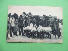 AKTYUBINSK (Kazakhstan) 1930 Animal Market. Russian Postcard - Kazakhstan