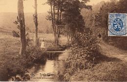 Trois-Ponts - Sous-bois Pittoresque - Carte Animée - Trois-Ponts