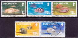 ASCENSION 1983 SG #349-53 Compl.set Used Sea Shells - Ascension