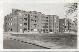 92 - SURESNES - La Maison Des Célibataires - Cité Jardin - CPA - ÉCRITE - - Suresnes