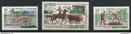 New Caledonia  - 1969 Cattle Breeding Set Of 3 MNH **   Sc 372-3 & C64 - Neufs