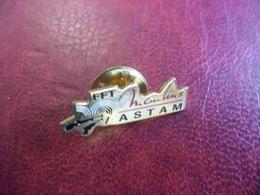 PIN'S FFT Fédération Française De TIR (MOULINS (03) ASTAM) 26 Mm X 9 Mm - Badges