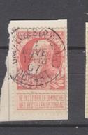 COB 74 Oblitéré BRUXELLES (rue Ducale) Départ - 1905 Grosse Barbe