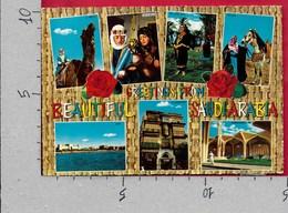 CARTOLINA VG ARABIA SAUDITA - Greetings From SAUDI ARABIA - Vedutine Multivue - 10 X 15 - ANN. 1972 - Saluti Da.../ Gruss Aus...