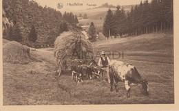 Carte Postale/Postkaart HOUFFALIZE Paysage (A90) - Houffalize