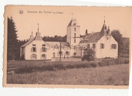 Carte Postale/Postkaart Florenville Domaine Des Epioux Le Château (A45) - Florenville