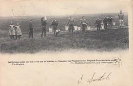 Kieldrecht Prosperpolder Prosper Polder Indijkingswerken Hedwige Polder (1904). Etendragers - Beveren-Waas