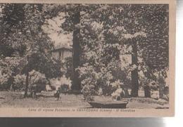 GRAVEDONA. CASA DI RIPOSO PELASCINI IL GIARDINO..VIAGGIATA 1949 F.P,-NM646 - Como