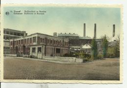 TIENEN    Raffinaderij En Burelen. - Tienen