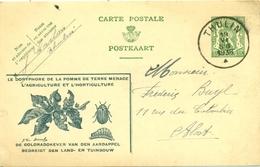 Propagandakaart Nr. 20 De Coloradokever - Le Doryphore Met Stempel Thulin 1936 - Stamped Stationery