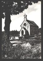 Laneuville-au-Bois - La Converserie, Endroit Où Le Cerf Apparut à Saint-Hubert - Tenneville