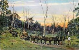 Australian Life Bij Raphael Tuck - 3 Pstcards - Australia