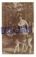 Photographie. Oranotypie. Jeune Femme Et Cerf Dans La Forêt. 1907 - Couples