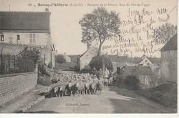Boissy L'Aillerie-Rentrée De La Pâture Rue Du Pot De Vigne. - Boissy-l'Aillerie