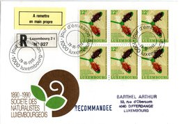 LUXEMBURG,    FDC,    Insects     /    LUXEMBOURG,    Lettre De Première Jour,   Insectes,     1990 - Insekten