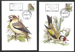 OCB Nr 2189/90 Faune Buzin Pas De Tenderie Geen Vogelvangst Stempel Brasschaat - 1985-.. Oiseaux (Buzin)