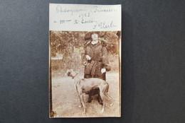 Cpa/pk Dog Hond Chien Champion Princesse Uccle Ukkel  Unused Postcard 1923 - Honden