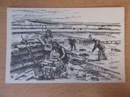 Arcachon - Bassin D'Arcachon - Parqueuses D'Huîtres - Carte Illustrateur Signée G. Jeanjean Et Numérotée - Non-circulée - Arcachon