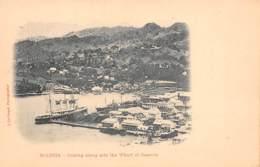 Sainte Lucie / 20 - Coaling Along Side The Wharf - Sainte-Lucie