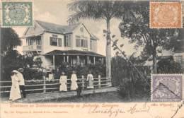 Surinam - Topo / 17 - Très Beau Cliché - Surinam