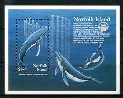 Norfolk Island 1995 Humpback Whale Conservation MS MNH (SG MS590) - Norfolk Island