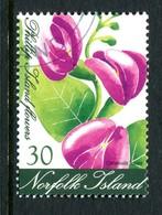 Norfolk Island 2002 Flowers - 30c Value Used (SG 799) - Norfolk Island