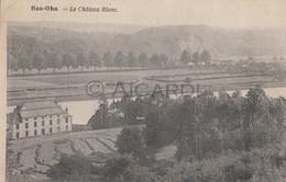 Carte Postale/Postkaart BAS-OHA Wanze Le Château Blanc  (Tossin-Landen)  (A93) - Wanze