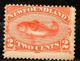 TERRE NEUVE - (NEWFOUNDLAND) - (Colonie Britannique) - 1887 - N° 41 - 2 C. Orange - (Morue) - Gran Bretagna (vecchie Colonie E Protettorati)