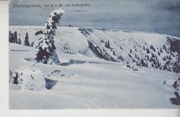 Hornisgrinde Mit Bieberkessel Nice Stamp 1908 - Autres