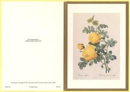 Tematica - Fiori - Rose - Biglietto Augurale - Rosa Hemisphaerica - Pierre-Joseph Redouté - Not Used - Vieux Papiers