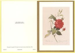Tematica - Fiori - Rose - Biglietto Augurale - Rosa Chinensis Cruenta - Pierre-Joseph Redouté - Not Used - Vecchi Documenti