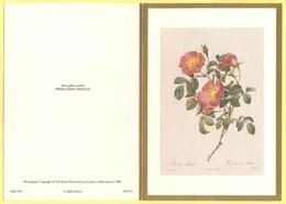 Tematica - Fiori - Rose - Biglietto Augurale - Rosa Gallica Pumila - Pierre-Joseph Redouté - Not Used - Altri