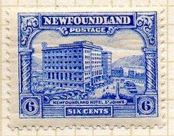 TERRE NEUVE - (Colonie Britannique) - 1931 - N° 161 - 6 C. Outremer - (New Foundland Hotel) - Other