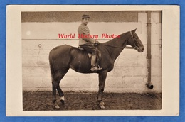 CPA Photo - Beau Portrait De Profil D'un Militaire , 10e Chasseurs à Cheval ? Dragons ? Hussards ?uniforme Patch étoile - Weltkrieg 1914-18
