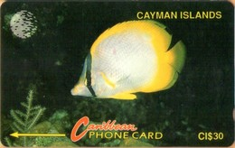 Cayman Islands - GPT, CAY-5B, 5CCIB, Yellow Fish, 30$, 9,905ex, 1992, Used - Kaimaninseln (Cayman I.)