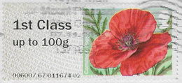 GB 2014 Symbolic Flowers 1st Type 2 Code 006007 Used [32/171/ND] - Great Britain