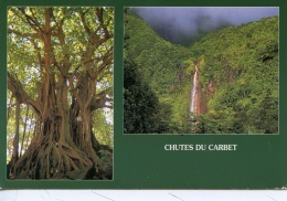 Guadeloupe : Chutes Du Carbet (photo Bois Beranger) N° 218 Multivues Arbre Remarquable - Other