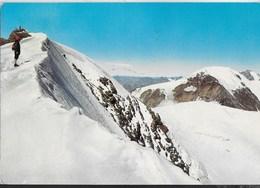 GRUPPO ORTLES-CEVEDALE - MONTE VIOZ - PALON DE LA MARE -  EDIZ. HERMES - VIAGGIATA 1974 DA COGOLO VAL DI PEJO (TN) - Alpinisme