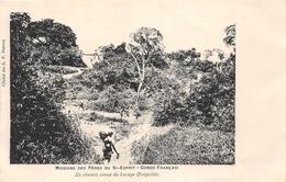 ¤¤  -  Mission Des Pères Du Saint-Esprit  -  CONGO-FRANCAIS  -  Un Chemin Creux Du Bocage Congolais   -  ¤¤ - French Congo - Other