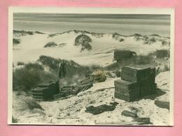PHOTO - PLAGE DE ZUYDCOOTE Près DUNKERQUE - RECUPERATION DES MUNITIONS APRES LA GUERRE 1939 / 1945 - WWII - Orte