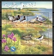 Ukraine 2002 Ucrania / Birds MNH Vögel Aves Oiseaux / Cu11210  C5 - Vogels