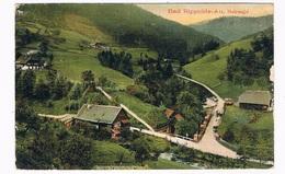 D-9080  BAD RIPPOLDSAU : Holzwald - Bad Rippoldsau - Schapbach