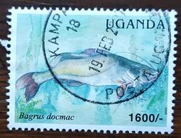 Ouganda - YT N°2177 - Faune / Poisson Du Lac Victoria - 2005 - Oblitéré - Ouganda (1962-...)