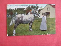 Horse One Of Our Farmer's Heavyweights  Corner Crease   Ref 3138 - Pferde